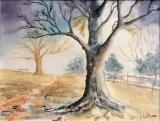 kalter Winter, 2006