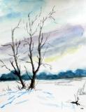 Winter im Cuxland, 2014